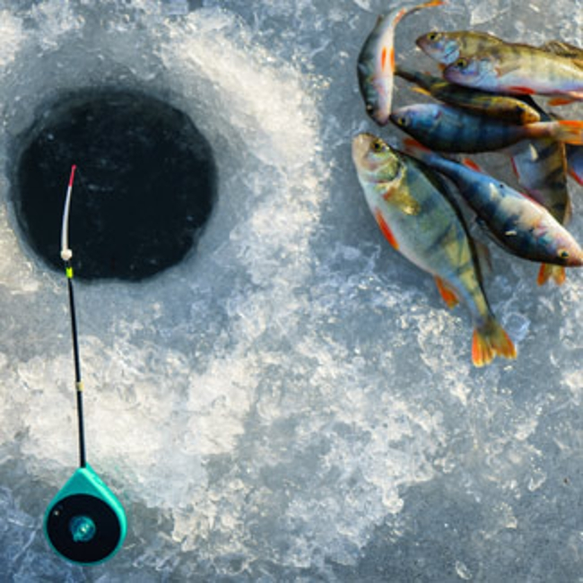 Ice fishing hole and pile of perch