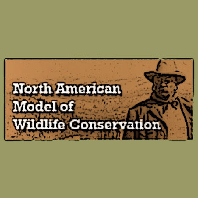 The North American Model of Wildlife Conservation graphic showing a sketch of Teddy Roosevelt.