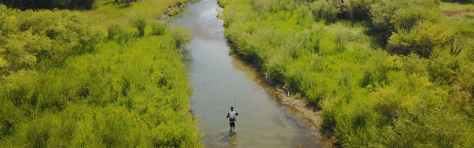 Fly fishing a Montana stream